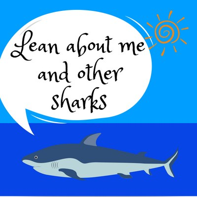 Shark Week (Summer Reading)